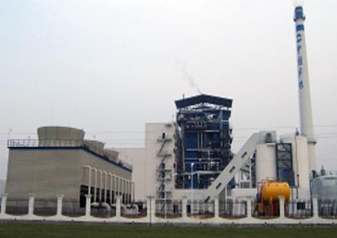 生物质(秸秆)直接燃烧发电技术应用与推广